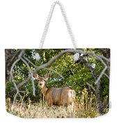 Utah Mule Deer Weekender Tote Bag