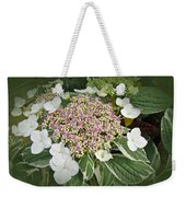 Variegated Lace Cap Hydrangea - Pink And White Weekender Tote Bag