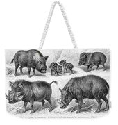 Varieties Of Swine Weekender Tote Bag