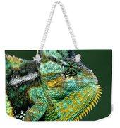 Veiled Chameleon Chamaeleo Calyptratus Weekender Tote Bag