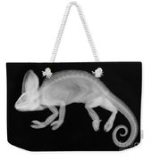 Veiled Chameleon X-ray Weekender Tote Bag by Ted Kinsman