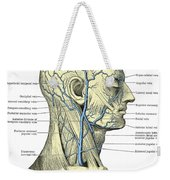 Veins Of The Head And Neck Weekender Tote Bag