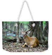 Velvet Buck At Rest  Weekender Tote Bag
