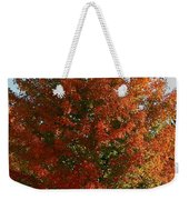 Vibrant Sugar Maple Weekender Tote Bag