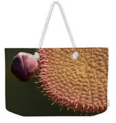 Victoria Amazonica Budding Weekender Tote Bag