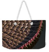 Victoria Amazonica Leaf Vertical Weekender Tote Bag