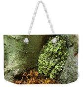 Vietnamese Mossy Frog Weekender Tote Bag