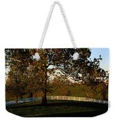 View Of A Large Sycamore Tree And White Weekender Tote Bag