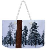 View Of A Ponderosa Pine Surrounded Weekender Tote Bag