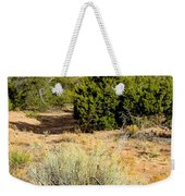 View Of The Desert New Mexico Weekender Tote Bag