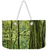 View Within A Rain Forest Weekender Tote Bag