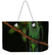 Violet-crowned Woodnymph Weekender Tote Bag