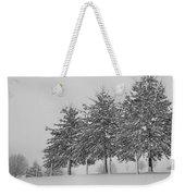 Virginia Snow Weekender Tote Bag