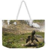 Volcan Alcedo Giant Tortoise Geochelone Weekender Tote Bag