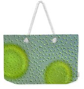 Volvox Globator Surface View Of Colony Weekender Tote Bag