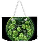 Volvox Weekender Tote Bag by Russell Kightley