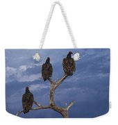 Vultures Perched On A Branch No.0022 Weekender Tote Bag