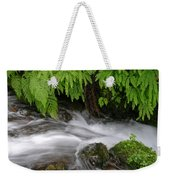 Wahkeena Falls One Weekender Tote Bag
