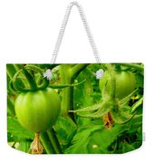 Waiting For The Harvest Weekender Tote Bag