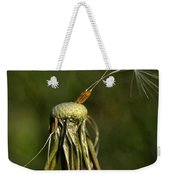 Waiting For The Wind Weekender Tote Bag