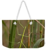 Walking Stick Insect Weekender Tote Bag