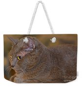 Warm Kitty  Weekender Tote Bag