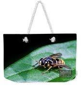 Wasp Break Weekender Tote Bag