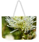 Wasp On Fothergilla 1 Weekender Tote Bag