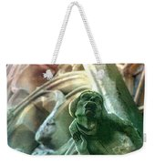 Watcher From Above Weekender Tote Bag
