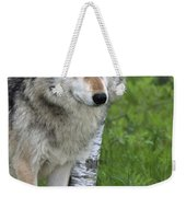 Watchful Eyes Weekender Tote Bag