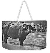 Water Buffalo In Black And White Weekender Tote Bag