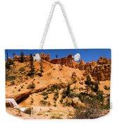 Water Canyon Dragon Weekender Tote Bag