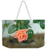 Water Dripping From A Peach Rose After Rain Weekender Tote Bag