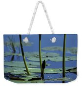 Water Lily Flowers Bloom From A Wetland Weekender Tote Bag