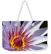Water Lily Soaking Up The Sun Light Weekender Tote Bag