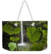 Waterfall In Lowland Tropical Rainforest Weekender Tote Bag