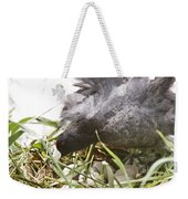 Waterhen Coot On Nest With Eggs Weekender Tote Bag