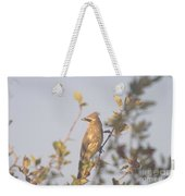 Wax Wing In Sunshine  Weekender Tote Bag