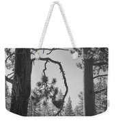 We Two Weekender Tote Bag by Laurie Search