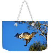 Wedge-tailed Eagle Weekender Tote Bag