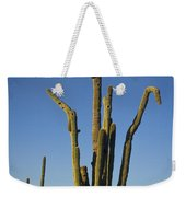Weird Giant Saguaro Cactus With Blue Sky Weekender Tote Bag