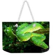 West Amazonian Emerald Tree Boa Weekender Tote Bag