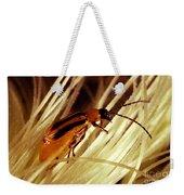 Western Corn Rootworm Beetle Weekender Tote Bag