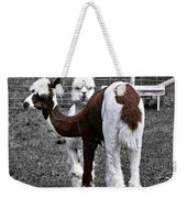 What Are You Looking At Weekender Tote Bag