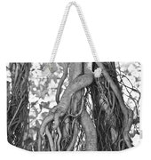 What Trees Know Weekender Tote Bag by Betsy Knapp