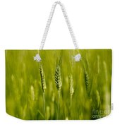 Wheat On The Field Weekender Tote Bag