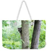 When Raccoon Dream Weekender Tote Bag