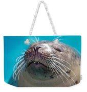 Whiskers Of A Seal Weekender Tote Bag