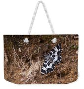 White-banded Black Moth Weekender Tote Bag