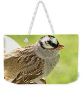 White Crowned Sparrow II Weekender Tote Bag